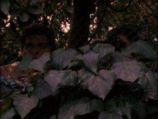 비키니 교통 학교 전체 영화 (1997)