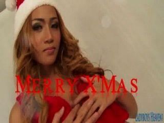 ladyboy pinky와 특별한 크리스마스