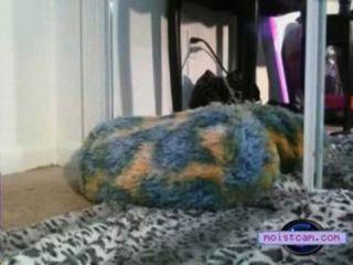 [xxx가 cam] 작은 금발 그녀의 구멍을 작동![moistcam.com]