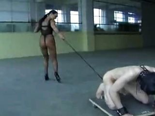 여주인 훈련 된 노예 공