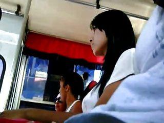 딕 플레시 버스