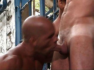 근육을 가진 게이 남자