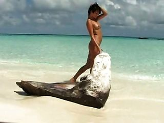 갈색 머리 아가씨는 해변에서 그녀의 면도 한 음부와 연극