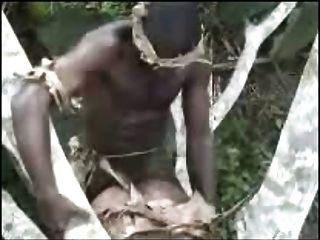아프리카 아마추어 삼인조 야외