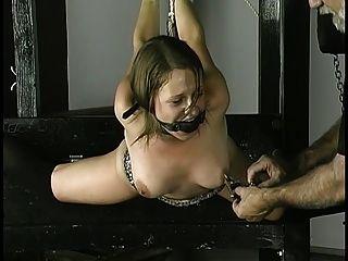 노예는 손목 주위에 로프를 가져오고 젖꼭지는 입에 고정시키고 공을 개를 밀어냅니다.