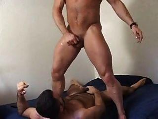 훈련에 포르노 배우