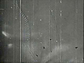 미확인 빈티지 섹스 2 (1930 1940)