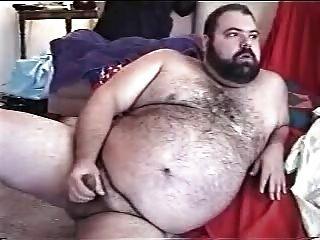 털이 뚱뚱한 곰 jo1