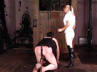 절묘한 영국 승마 여주인은 그녀의 조랑말을 훈련시킨다.