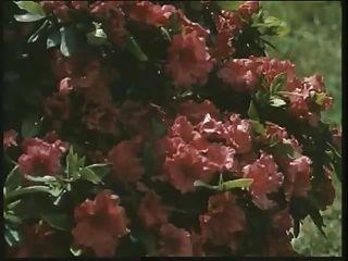 고전적인 영국의 걸레 루이스는 정원에서 좆된다.