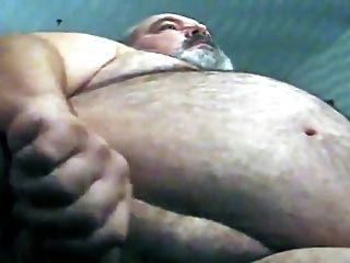 털이 뚱뚱한 곰 jo3