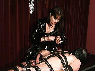 그의 노예를 짜내는 도미 나의 얼굴에 앉아있다.