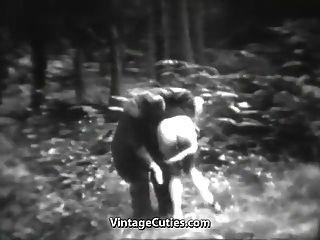 놀라운 암 캐는 숲에서 재미를 가지고 (1930 년대 빈티지)
