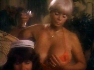 섹시한 숙녀들이 놀고 와일드 한 빈티지 삼인조로 좆된다.