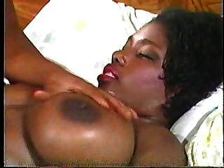흑단 humpers 3 1993