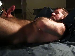 곰이 그의 수탉을 치다
