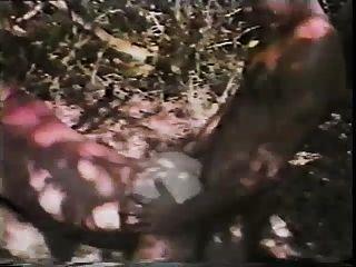 숲 속의 섹스