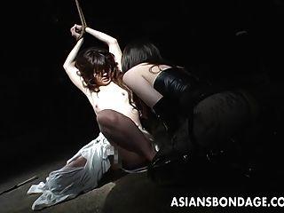 묶여 아시아 베이비는 거친 닙 빠는을 견디다.